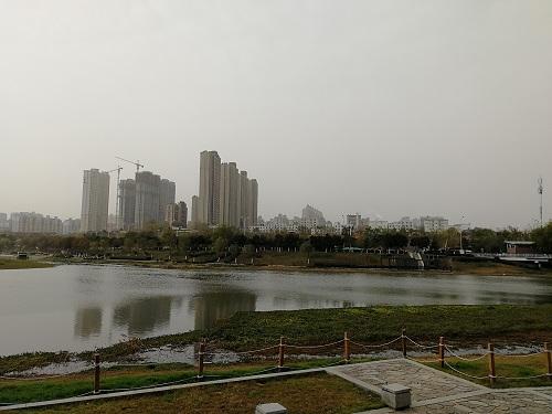 taohua5.jpg