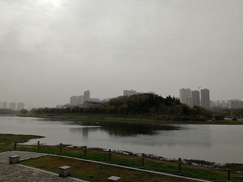 taohua2.jpg